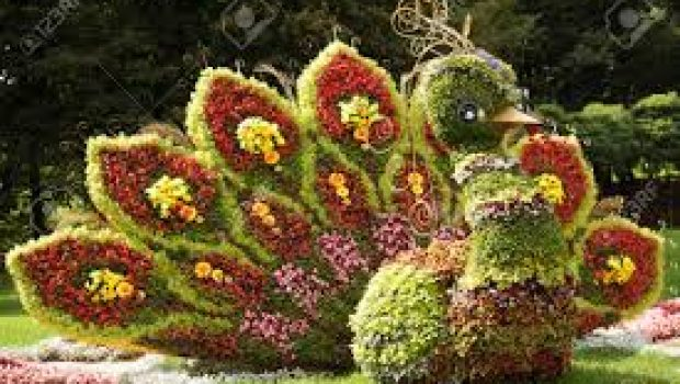 Fiori d 39 artista sculture di fiori tvoggi salernotvoggi for Sculture di fiori